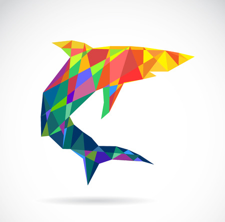 tail fin: Vector image of an shark design on white background