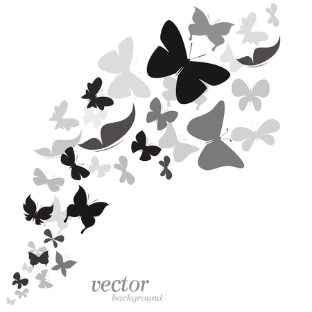 masses: Butterfly design on white background    Illustration