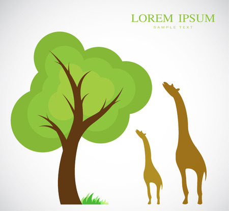 acacia tree: Vector image of trees and giraffes on white background