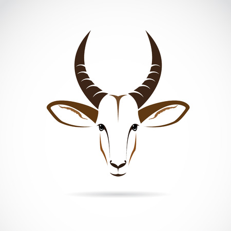 Vector afbeelding van een hertenkop (impala) op een witte achtergrond.