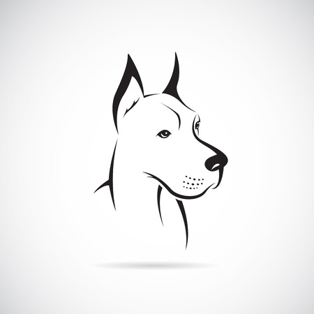 outlines: image of an dog (Great Dane) on white background Illustration