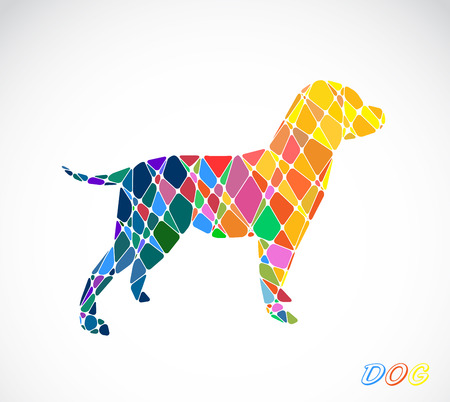 Labrador dog abstract isolated on a white backgrounds
