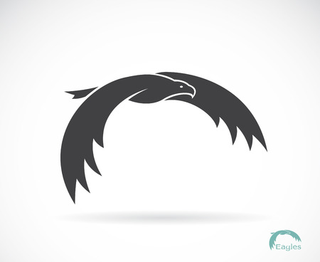 image of an eagle design on white background Vector