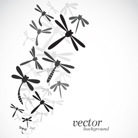 dragonfly wing: Dragonfly design on white background  Illustration