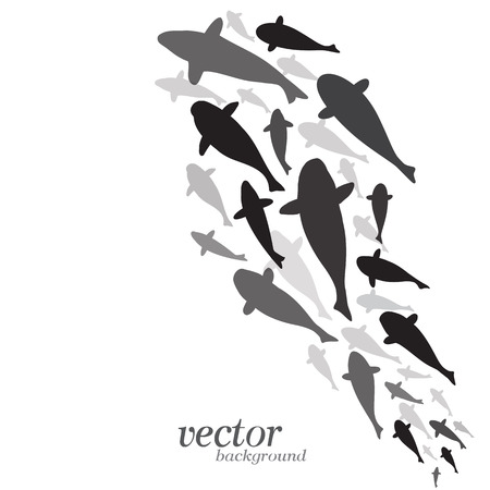 Fish design on white background - Vector Illustration
