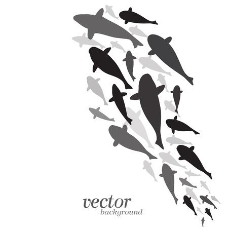 la conception de poissons sur fond blanc - illustration vectorielle