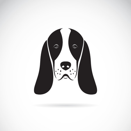 droopy: basset hound head on white background