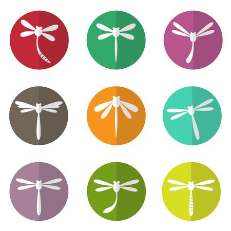 dragonfly wing: Vector group of dragonfly in the circle on white background Illustration