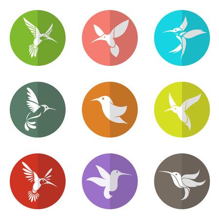 colibries: grupo de colibrí en el círculo sobre fondo blanco Vectores