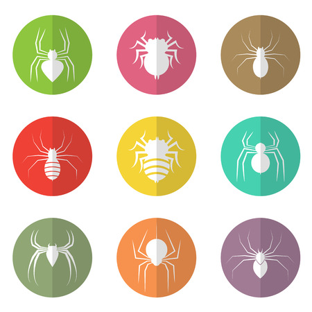 Vector group of spider in the circle on white background Stock Vector - 29032309