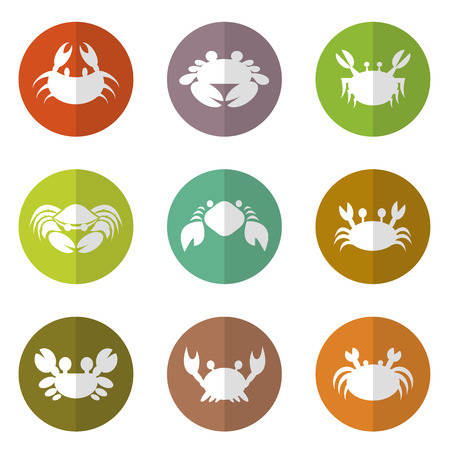 crab legs: Vector group of crab in the circle on white background Illustration