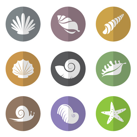 Vector group of shellfish in the circle on white background