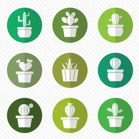 potted plant cactus: Vector group of cactus in the circle on white background Illustration