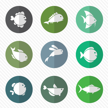 puffer fish: Vector group of fish in the circle on white background Illustration