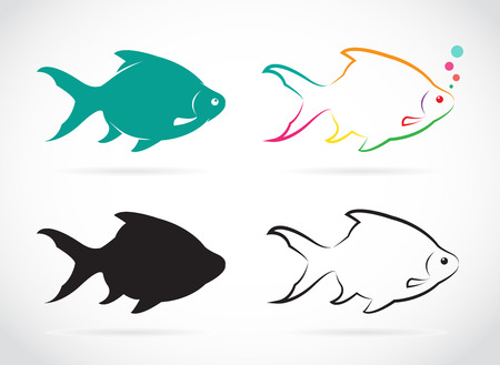 common carp: Vector group of fish on white background