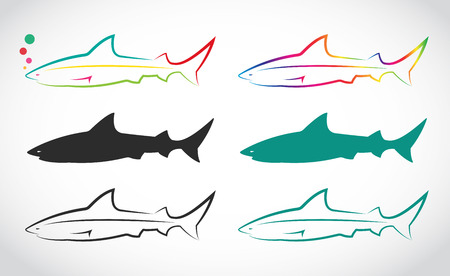 Vector group of shark on white background. Vector