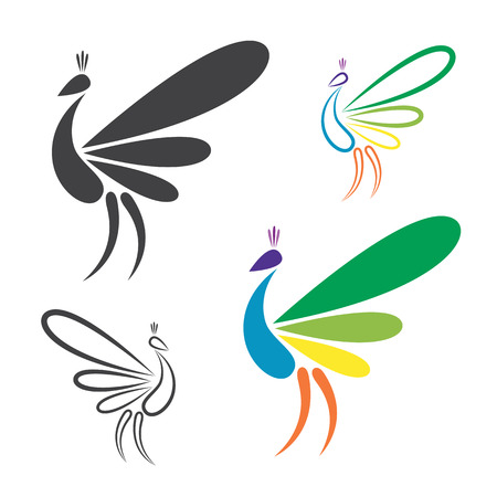 Vector image of peacock design on white background. Vector