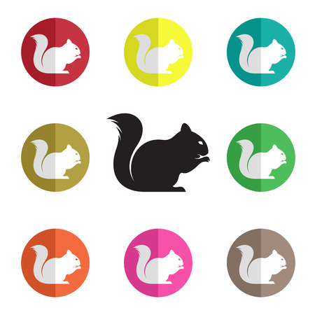 group of squirrel on white background Vector