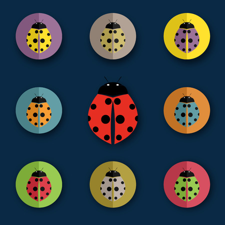 group of beetles on blue background Vector