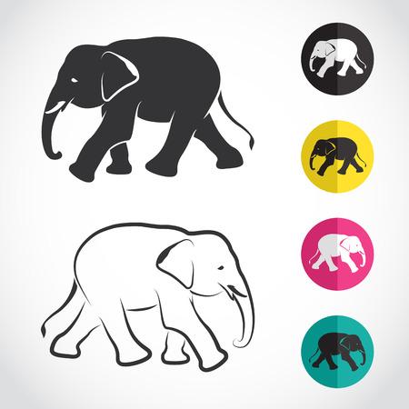 silhouettes elephants: Vector de imagen de un elefante en el fondo blanco Vectores