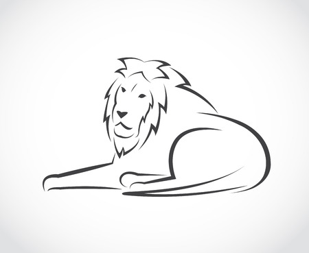 Vector image of an lion on white background