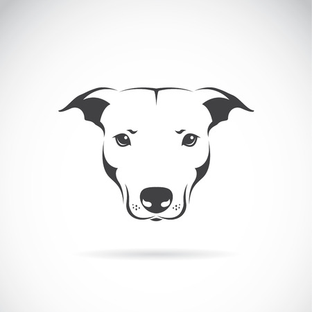 black and white pit bull: Vector image of a dog head on white background Illustration