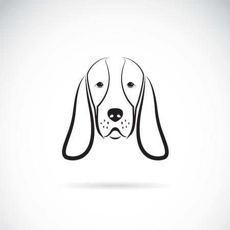 basset: Vector image of a basset hound head on white background Illustration