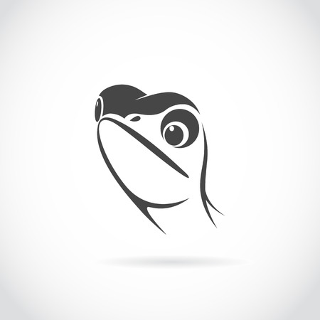 Vector image of lizard head on white background Vector