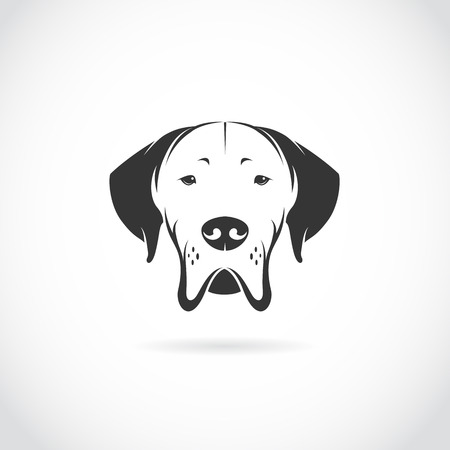 Vector image of dog head on white background Vector