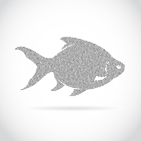 common carp: Vector image of an fish design on a white background Illustration
