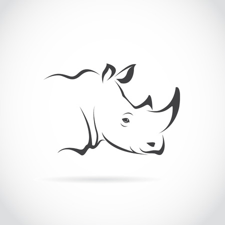 africans: Vector image of rhino head on white background
