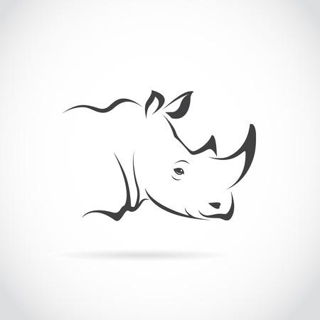 big head: Vector image of rhino head on white background