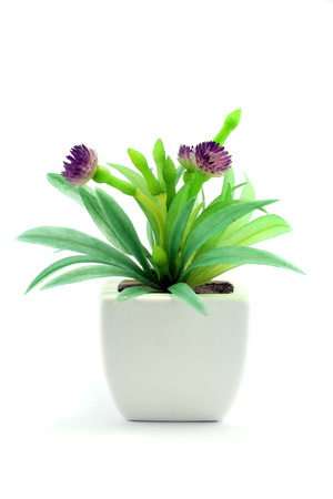 Purple fake flowers in the vase on white background photo