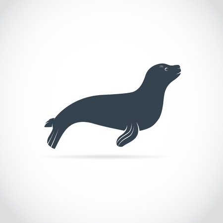 images of sea lion on a white background Illustration