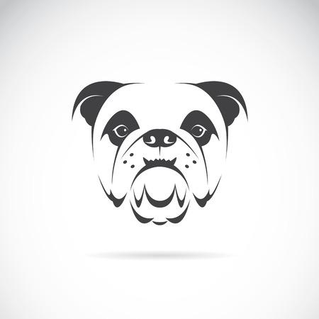 dogo: Vector de imagen de una cara de perro (bulldog) sobre fondo blanco Vectores