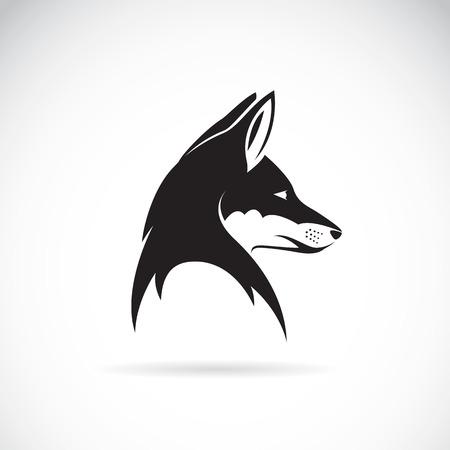 zorro: Vector de imagen de una cabeza de zorro en el fondo blanco Vectores