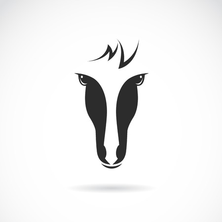 solemn: Vector image of an horse face on white background
