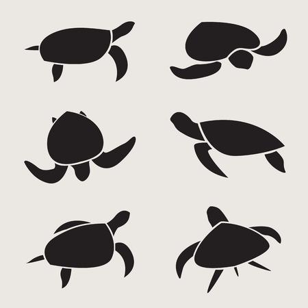 흰색 배경에 거북이의 벡터 그룹 일러스트