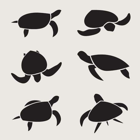 Vector group of turtle on white background Illustration