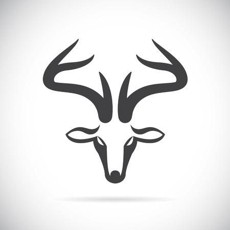 bocinas: Vector im�genes de ciervos cabeza sobre un fondo blanco.