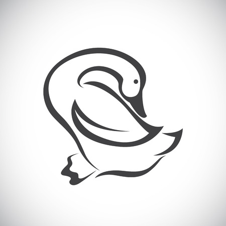 Vector image of an duck on white background