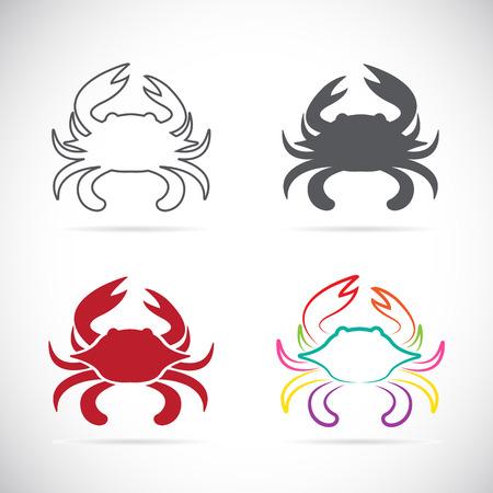 cangrejo: Conjunto de iconos del vector del cangrejo en el fondo blanco