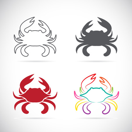 Set of vector crab icons on white background Çizim