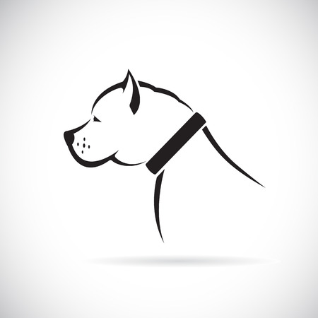 Vector images of Pitbull dog on a white background. Vector