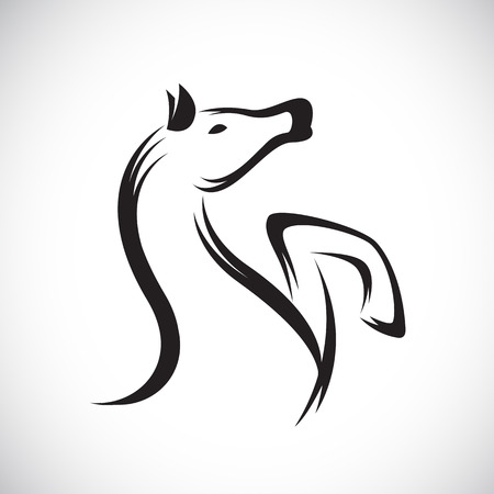 Vector images of horse on a white background. Vector