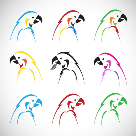 Vector images of group parrot on a white background. Vector