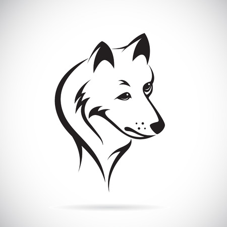 Vector images of wolf head on a white background. Vector