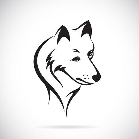 Vektor-Bilder von Wolf Kopf auf einem weißen Hintergrund.