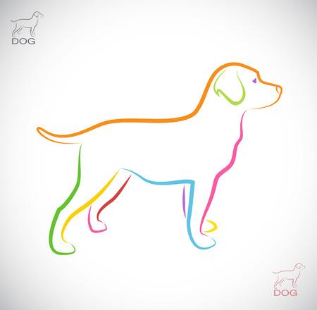 lineas blancas: Vector de imagen de un labrador perro sobre fondo blanco
