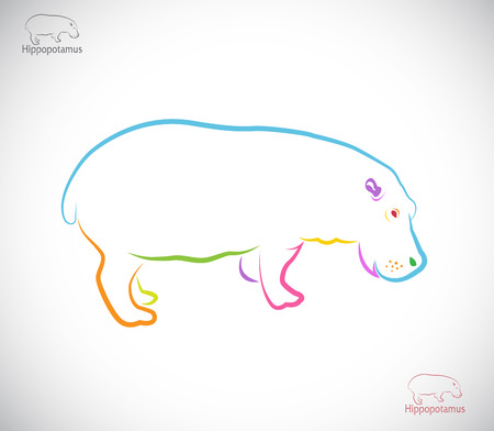 endangered species: Vector image of an hippopotamus on white background
